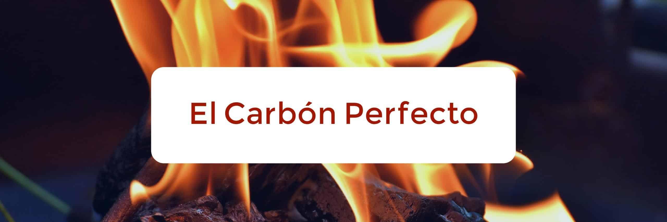 Que carb n es ideal para mi barbacoa de carb n - Carbon para barbacoa ...